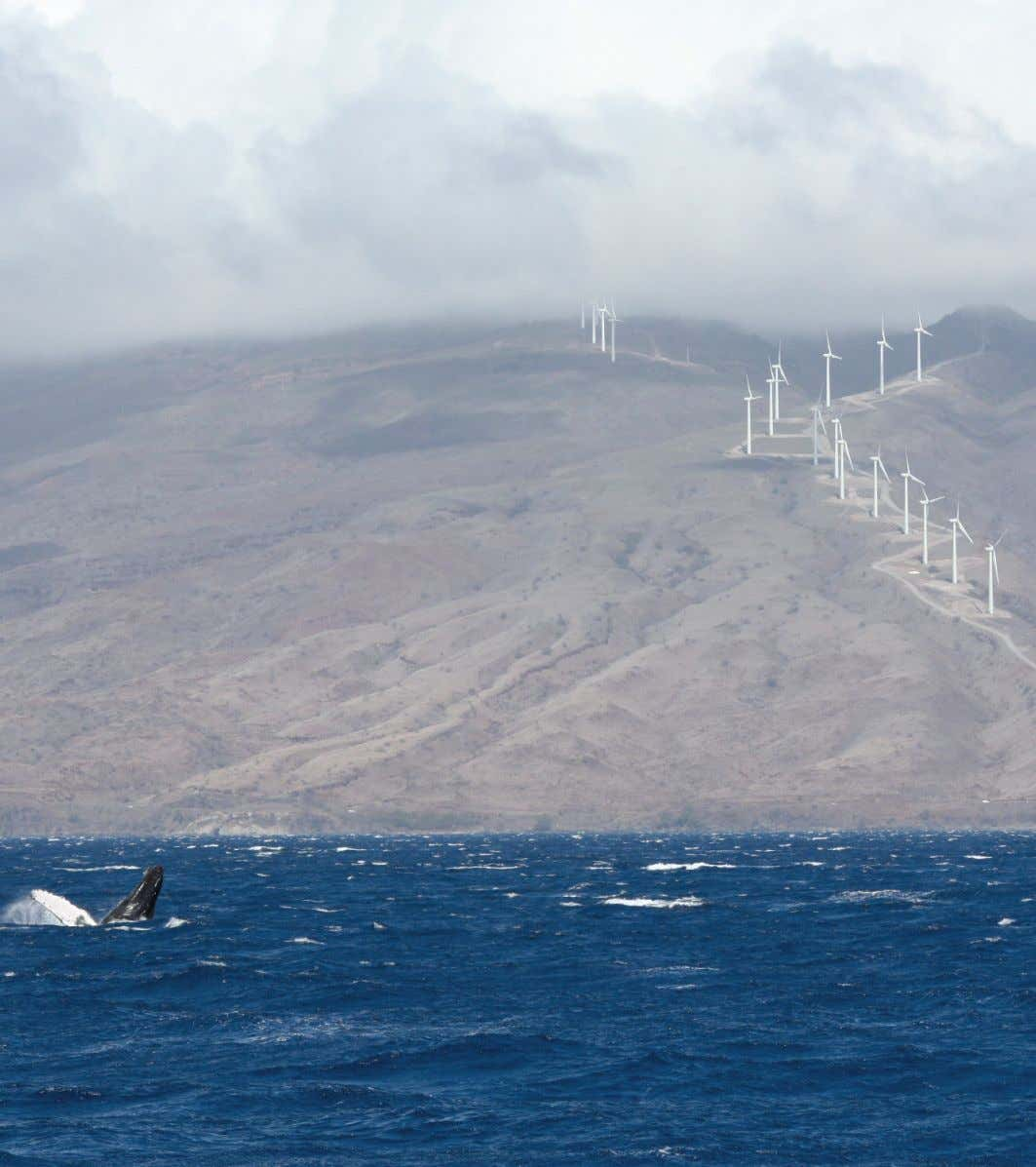 9 Collecting the power of the wind | ABB wind power solutions