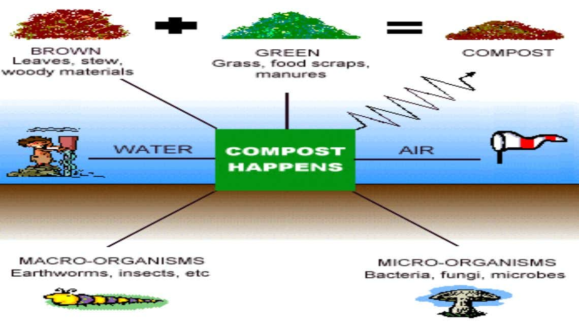 Composting Process (cont.) vi. mixing process to prevent dehydration on the surface of the compost vii.