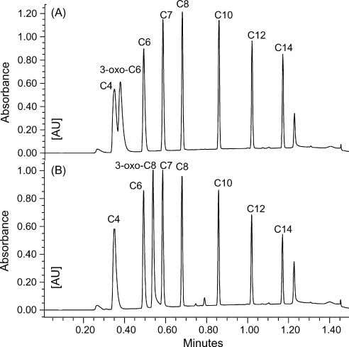 Milford, MA, USA); Chromabond HR-P was from Macherey (Duren, Fig. 2. Chromatogram of a standard solution