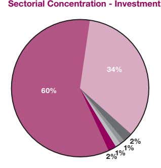 Sectorial Concentration - Investment 34% 60% 2% 1% 2% 1%