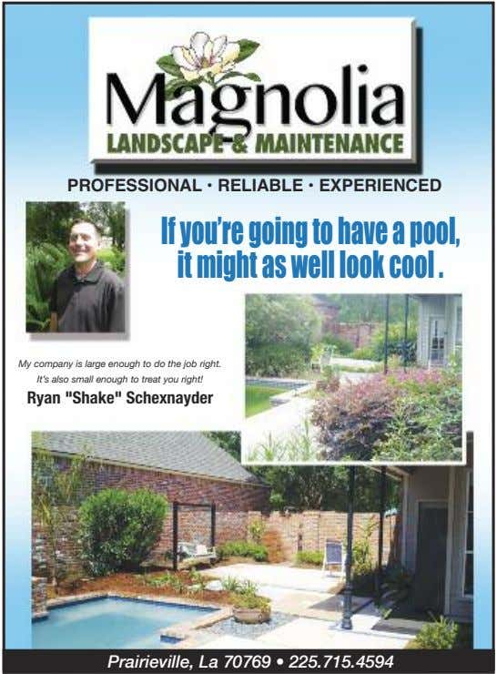 PROFESSIONAL • RELIABLE • EXPERIENCED Ifyou'regoingtohaveapool, itmightaswell lookcool . My company is large