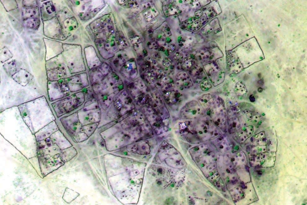 False-color infrared satellite image of the village of Um Gunya recorded after the government offensive in