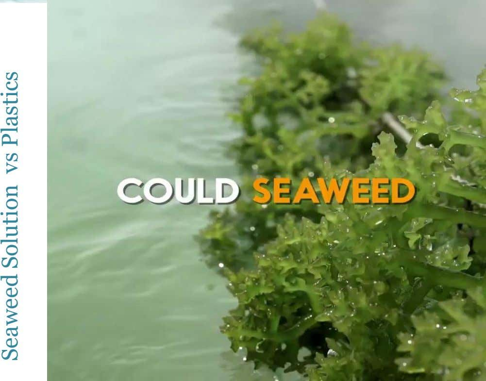 Seaweed Solution vs Plastics