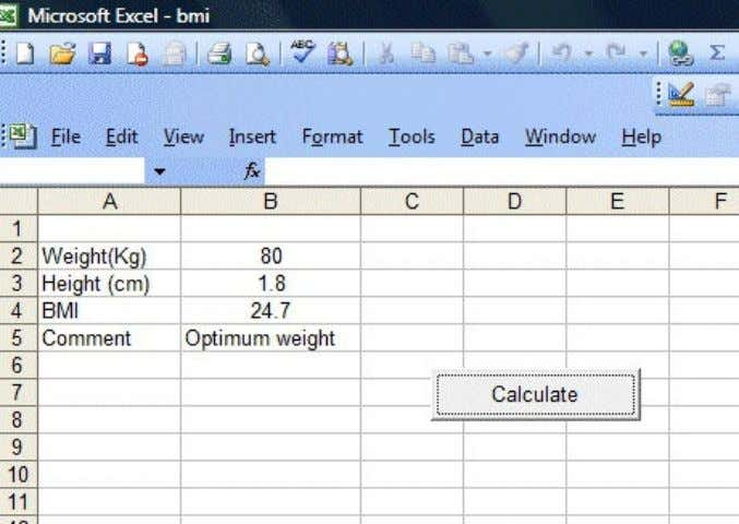 Calculator 17.2: Financial Calculator Figure 17.1: BMI This is an Excel VBA program that can