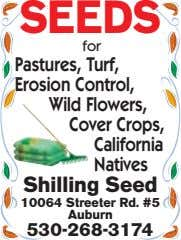 SEEDS for Pastures, Turf, Erosion Control, Wild Flowers, Cover Crops, California Natives Shilling Seed 10064