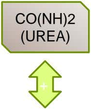 CO(NH)2 (UREA) + +