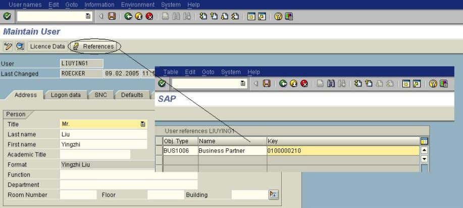 business partner number as reference of the system user. SAP DEVELOPER NETWORK | sdn.sap.com BUSINESS PROCESS