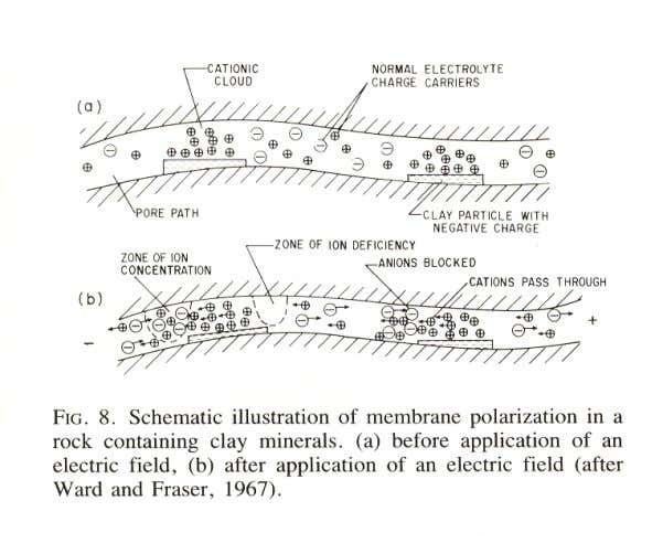 12/11/11 Relationship between apparent chargeability and intrinsic chargeabilities •   Assume the subsurface is