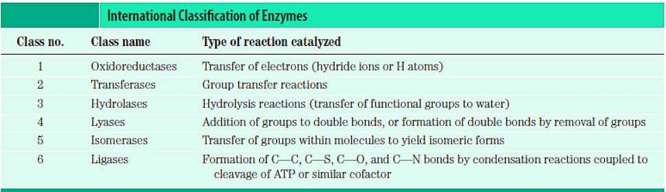 and related reaction types are described in the table below: Binding of an enzyme active site