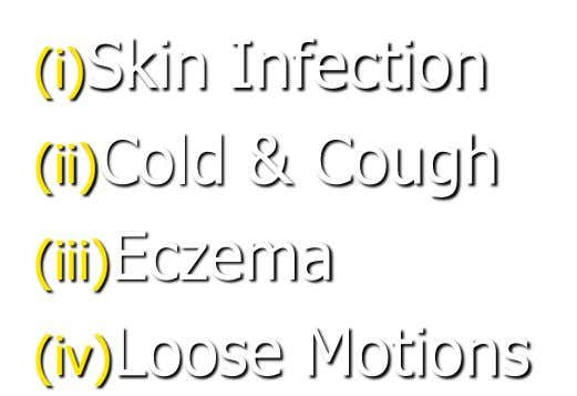 (i)Skin Infection (ii)Cold & Cough (iii)Eczema (iv)Loose Motions