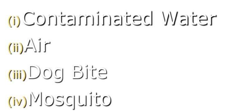 (i)Contaminated Water (ii)Air (iii)Dog Bite (iv)Mosquito