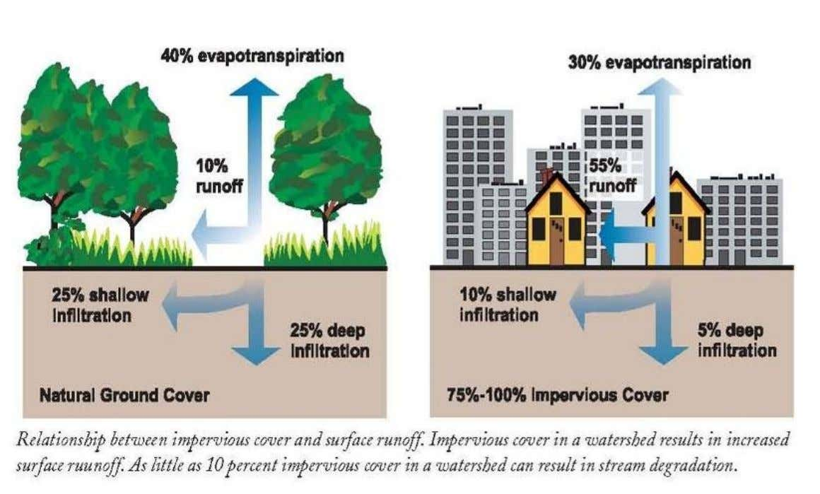 IMPACTS FROM URBANIZATION