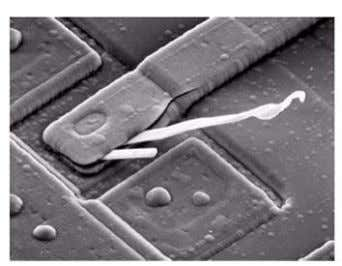 none of above 36. SEM image of a damaged integrated circuit Fig. (a) Fig. (b) a.