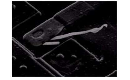 above 36. SEM image of a damaged integrated circuit Fig. (a) Fig. (b) a. SEM image