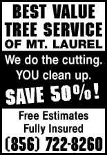 856 912-5499 Firewood for sale! 10% OFF WITH THIS AD BIG TIMBER Tree Service LLC Tree,