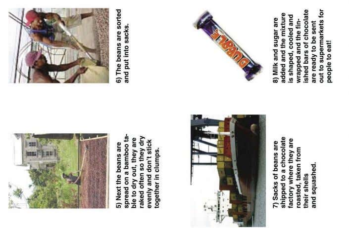 Additional sheets: Bean to Bar pictures & template, Chocolate bar template, Lynda's story FROM BEAN TO