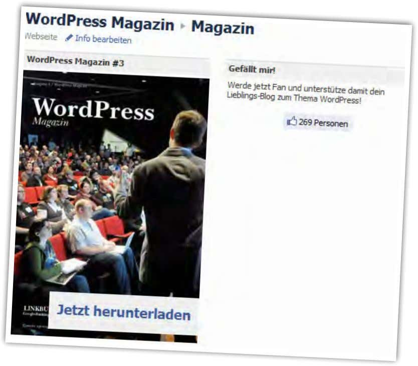 WordPress Magazin 31