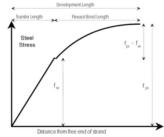 Figure 3. Stress Distribution in a Strand (PCI, 1978) 2.2.3 Flexural Bond Length The flexural