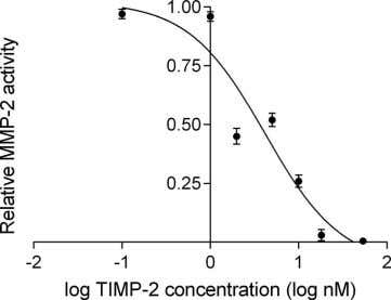 TIMP-2 Inhibition of Myopia Development F IGURE 4. Human TIMP-2 prevents the digestion of biotin-labeled gelatin
