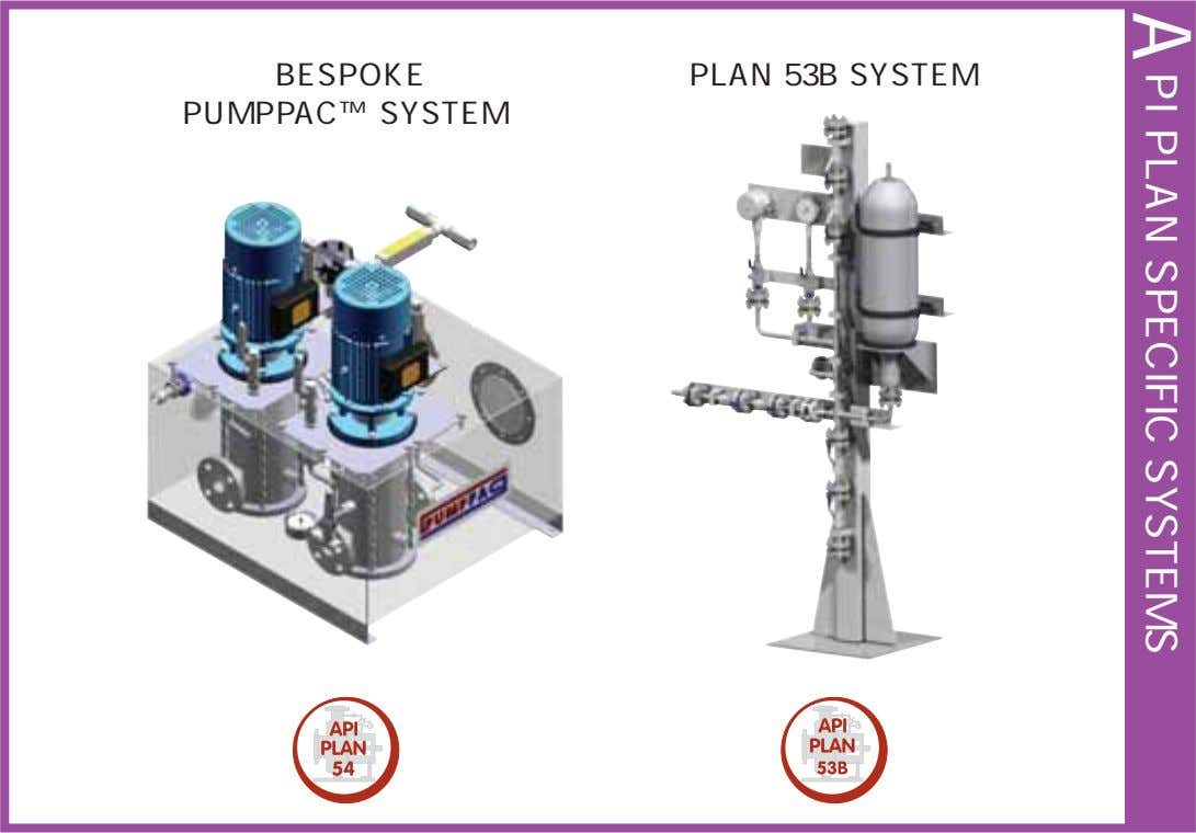 A PI PLAN SPECIFIC SYSTEMS BESPOKE PUMPPAC™ SYSTEM PLAN 53B SYSTEM