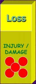 Loss INJURY / DAMAGE