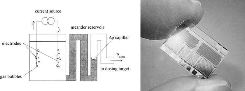 transport fluid from the centre to the perimeter [61,62] . Fig. 10. Electrochemical displacement micropump: function