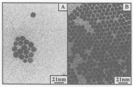 formed is rather small and large nanocrystals are produced. On increasing the water content, the number