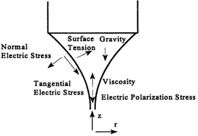 the cone by balancing the forces that are present figure 3. The Particle Technology Section of