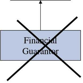 Financial Guarantor
