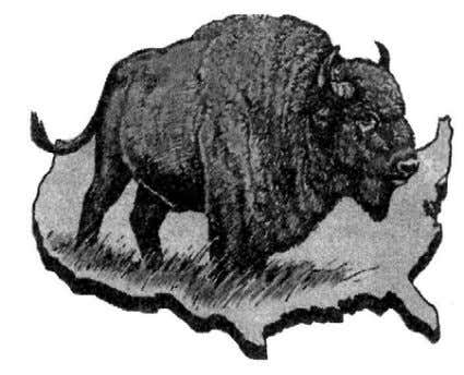 lamb became a bison which represented the United States! The Mark of the Beast — Ellen