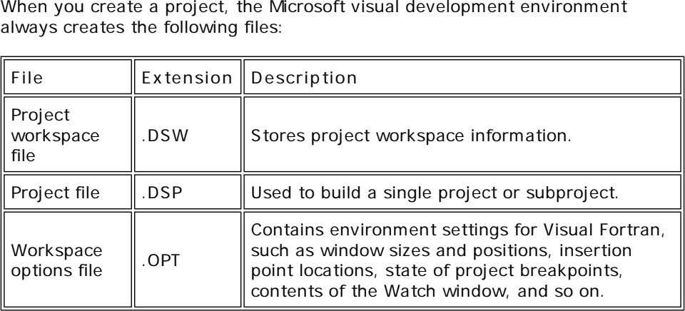 When you create a project, the Microsoft visual development environment always creates the following files: