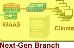 WAAS Clients Next-Gen Branch