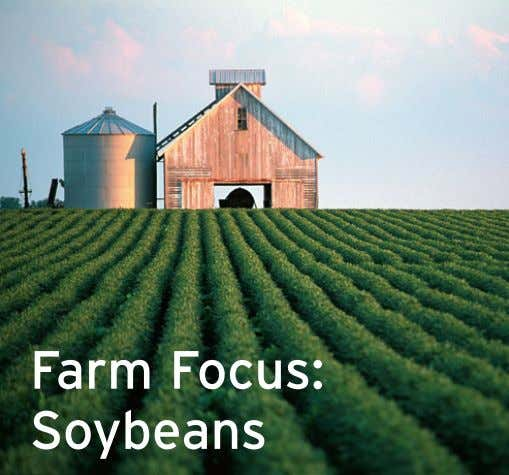 Farm Focus: Soybeans