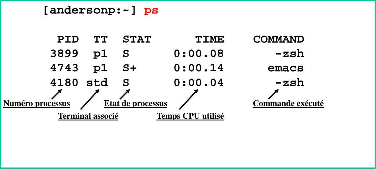 [andersonp:~] ps PID TT STAT TIME COMMAND 3899 p1 S 0:00.08 -zsh 4743 p1 S+