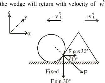 ˆ the wedge will return with velocity of vi z y –v i +v i