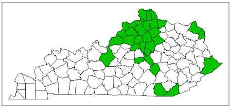 Figure 1. Counties colored in green comprise the current EAB quarantine area in KY. Consider