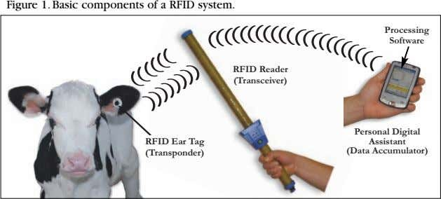 Figure 1. Basic components of a RFID system. Processing Softwar e RFID Reader (Transceiver) Personal Digital