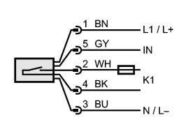 IN: programming input K1: Relay Note: miniature fuse to IEC60127-2 sheet 1, ≤ 2 A