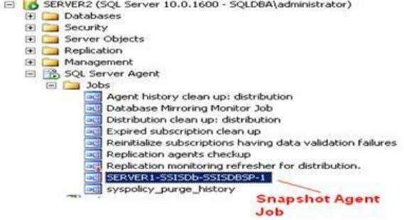 Agent -> Jobs -> Find snapshot agent job was created FAQ: How to display database names