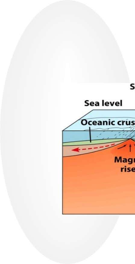 Volcanoes at Divergent Boundaries • Occur at Mid-Ocean Ridges • New crust forms as magma rises