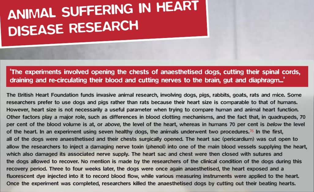 ANIMAL SUFFERING DISEASE RESEARCH IN HEART 'The experiments involved opening the chests of anaesthetised dogs,