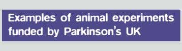 Examples of animal experiments funded by Parkinson's UK