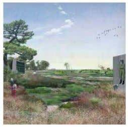 of merely perceiving the landscape as a representation. Landscape architecture as I see it, can provide
