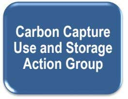 Carbon Capture Use and Storage Action Group