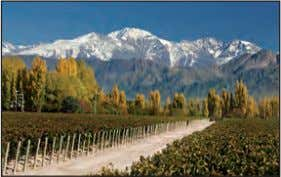 lack in size, they make up for in service and selectivity. TaSTing COrner: MOre THan MaLBeC