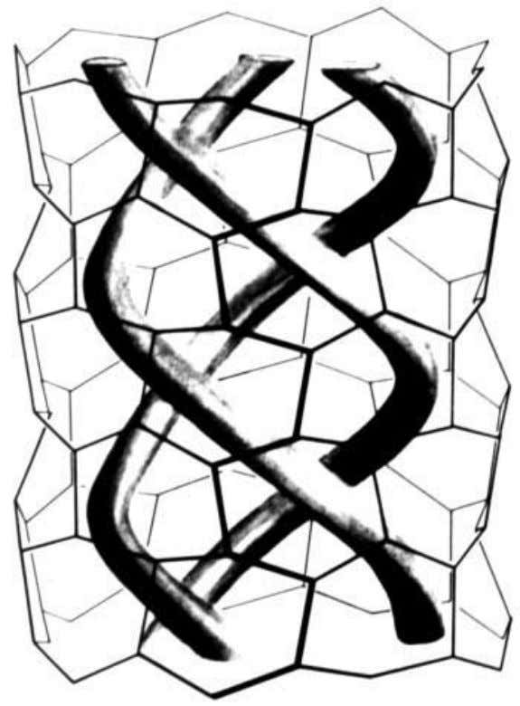 found in the refined structure. This observation raises an Fig. 10. The triple water helix, represented