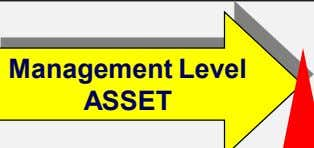 Management Level ASSET