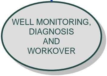 WELL WELL DIAGNOSIS MONITORING, MONITORING, DIAGNOSIS AND WORKOVER WORKOVER AND