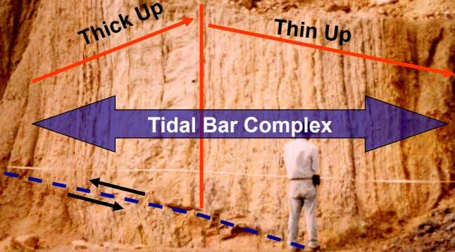 Thin Up Thick Up Tidal Bar Complex