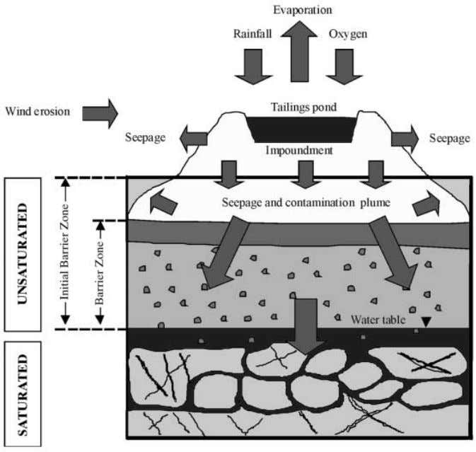 3 Conceptual model of tailings dam and affected subsurface Bull Eng Geol Env (2000) 59 :
